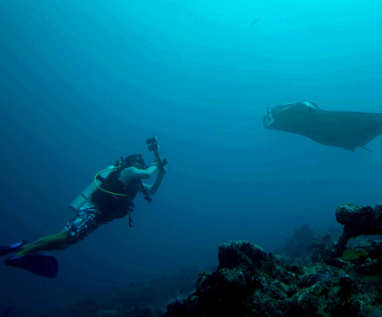 Maldives Scuba Diving image   Kurumba Maldives Resort