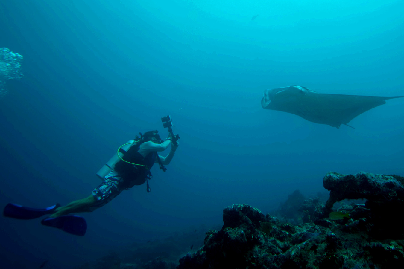 Maldives Scuba Diving image | Kurumba Maldives Resort