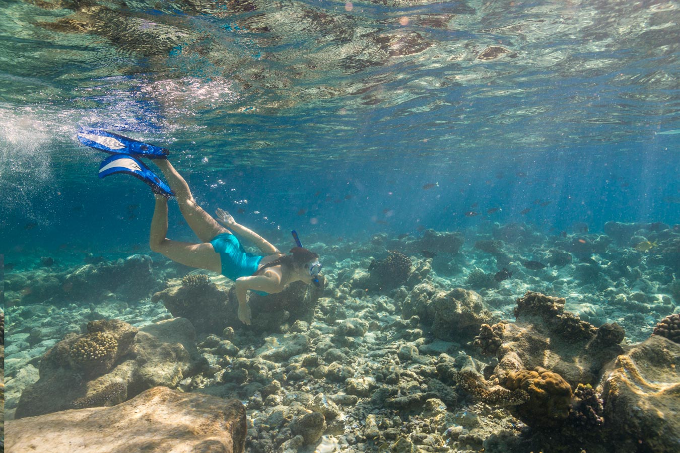 Snorkelling at Kurumba Maldives image| Kurumba Maldives Resort
