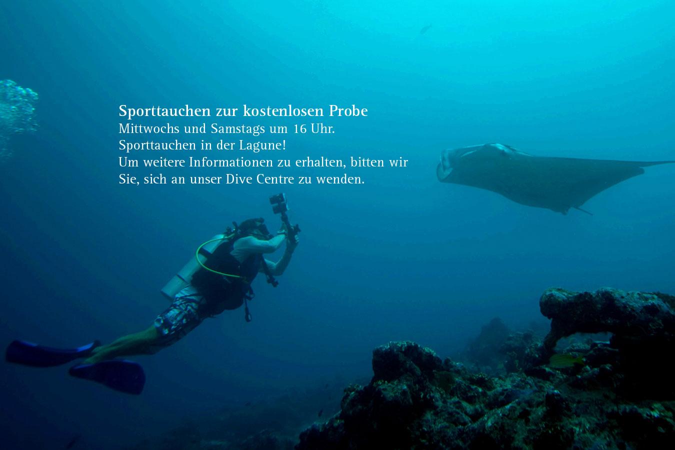 Dive-DE.jpg